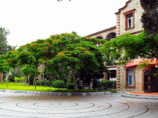 厦门大学校园绿化——重庆风景园林网