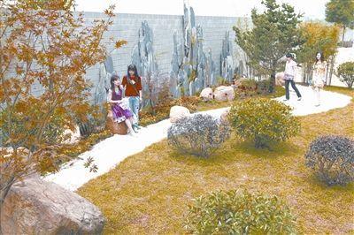 """武汉:""""杉海闻涛""""和""""山水""""折桂——重庆风景园林网 市"""