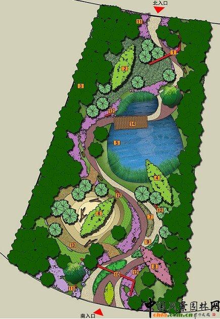 园林手绘平面树木