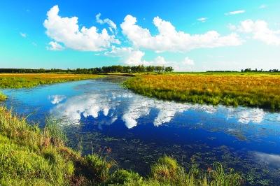 黑瞎子岛湿地.