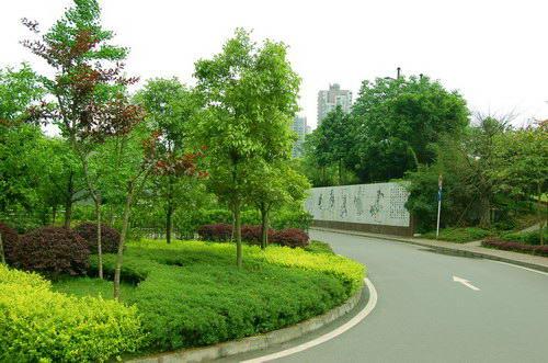 重庆原野艺轩景观规划设计有限公司