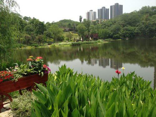 重庆尚源建筑景观设计有限公司 重庆风景园林网 重庆