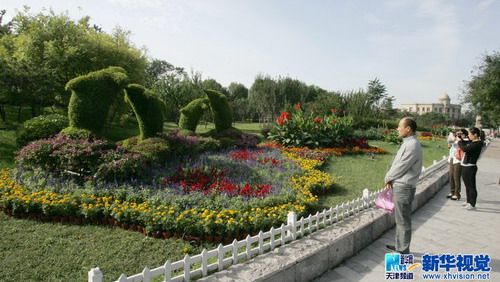 长方形花坛园林设计图