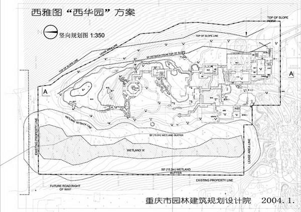 柳树 园林手绘线稿