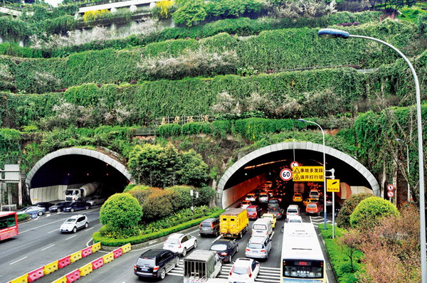 立体绿化植物景观设计分析——以重庆嘉华大桥隧道口立体绿化为例