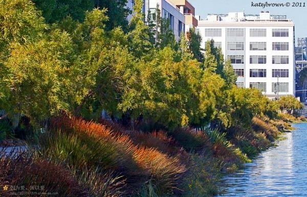 旧金山迷欣湾公园——重庆风景园林网 重庆市风景园林