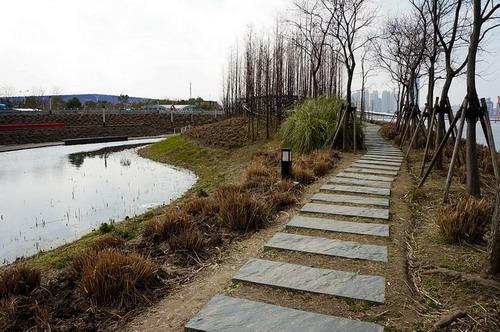 中国上海后滩公园——重庆风景园林网