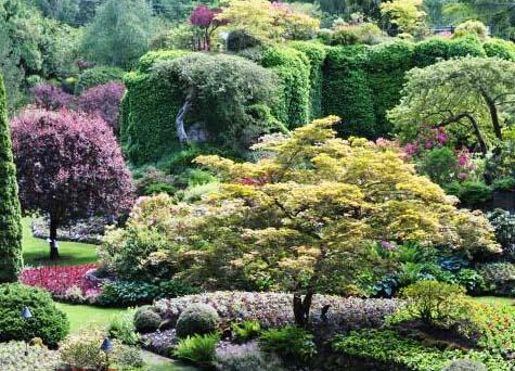加拿大宝翠花园 重庆风景园林网 重庆市风景园林学会