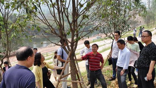 重庆市风景园林学会组织植保专家深入基层技术服务
