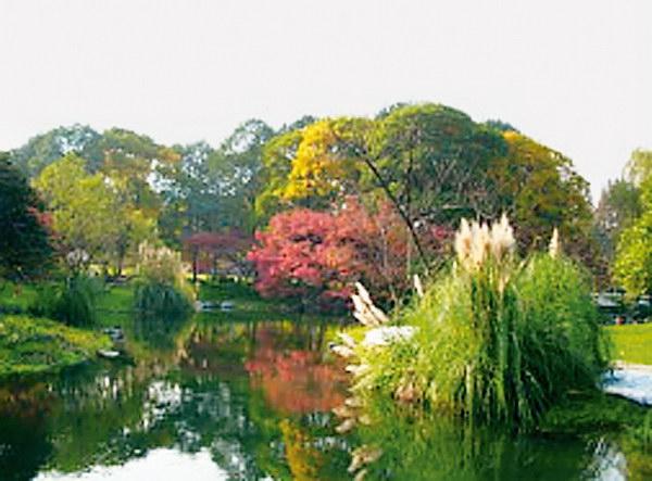 浅析康复花园设计 重庆风景园林网 重庆市风景园林学会