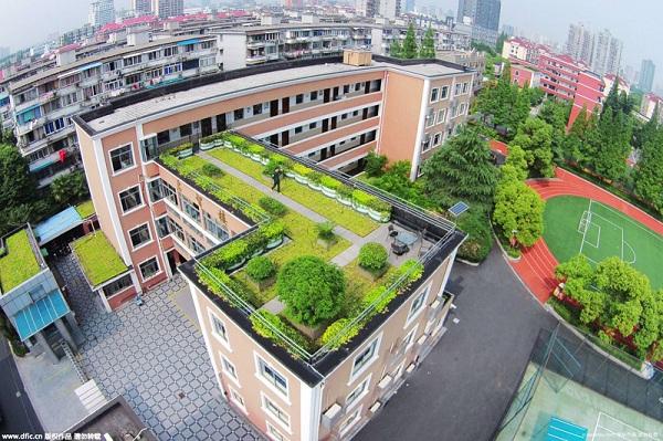 力 打扮 屋顶绿化 航拍镜头下的 空中花园 多图