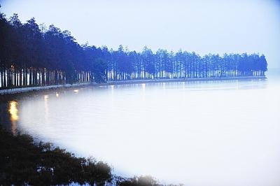 湖北:东湖绿道试亮景观灯——重庆风景园林网