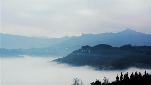 万盛经开区石林镇乡村大雾弥漫 景色缥缈如仙境图片