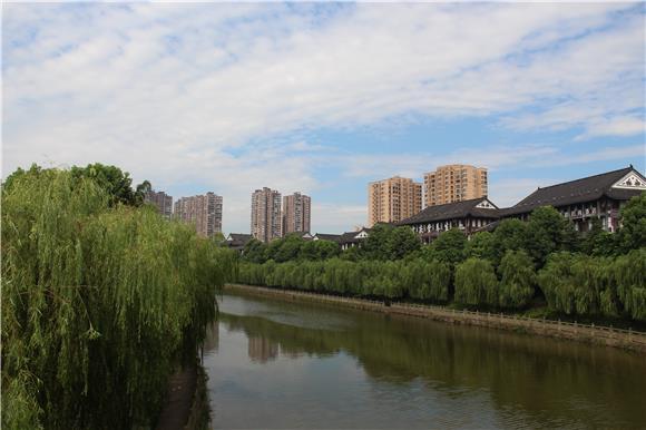 铜梁:柳树伴河河更美 重庆风景园林网 重庆市风景园林